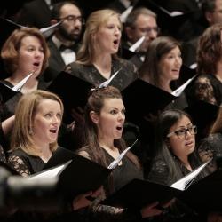 Bruckner/Wagner Philharmonie_15